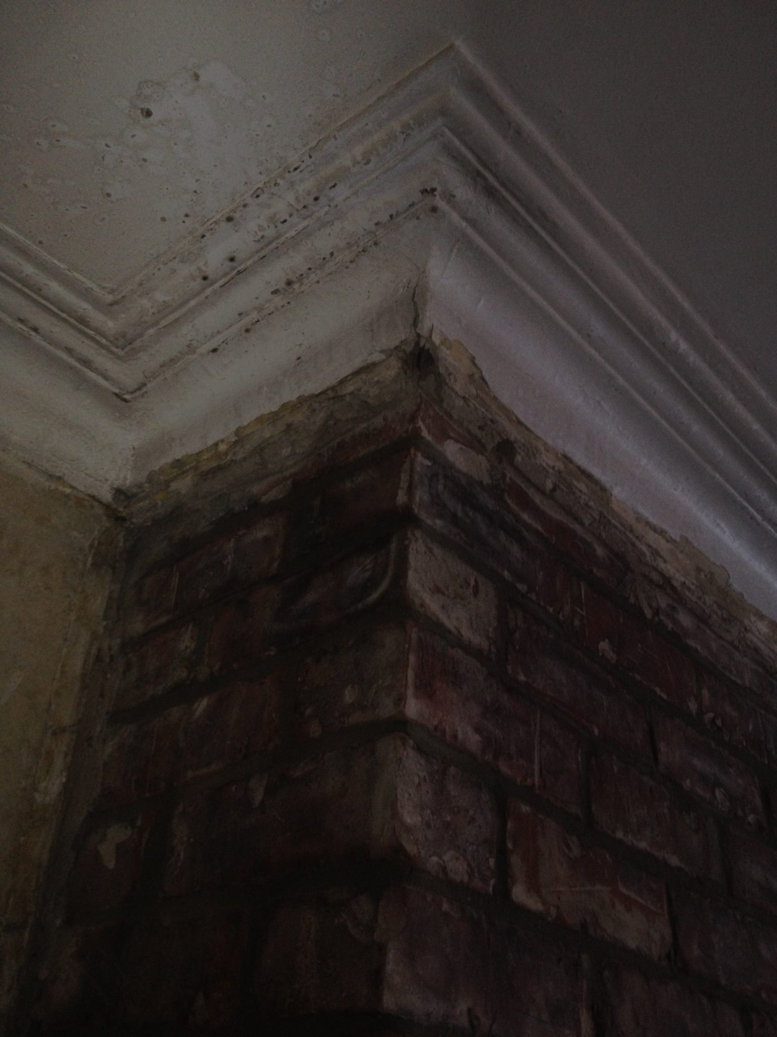 Fireplace Restoration